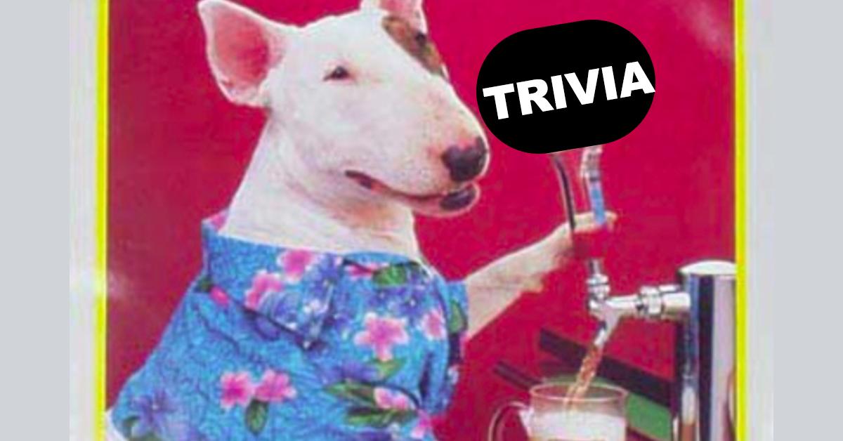 Trivia S15 Quiz #15